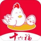 十六福app下载