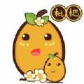 枇杷资讯app下载